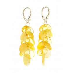 "Elegant earrings from a lemon and milk amber ""Golden confetti"""