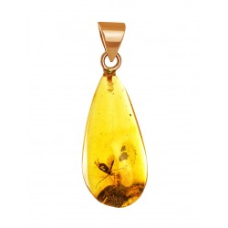 "Gold pendant of natural amber with inclusions fly ""Clio"""