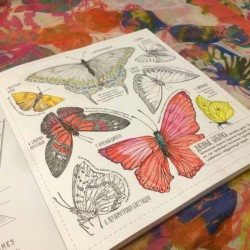 Create large and small 35 posters for coloring