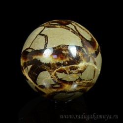 Ammonite ball of diameter 67-68mm, 430 g