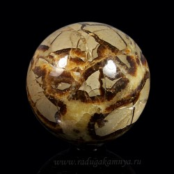 Ammonite ball of diameter 74-75mm, 590gr.